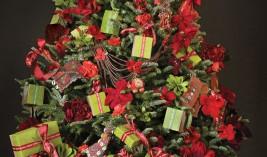 Regalos Solidarios de Navidad Aveda