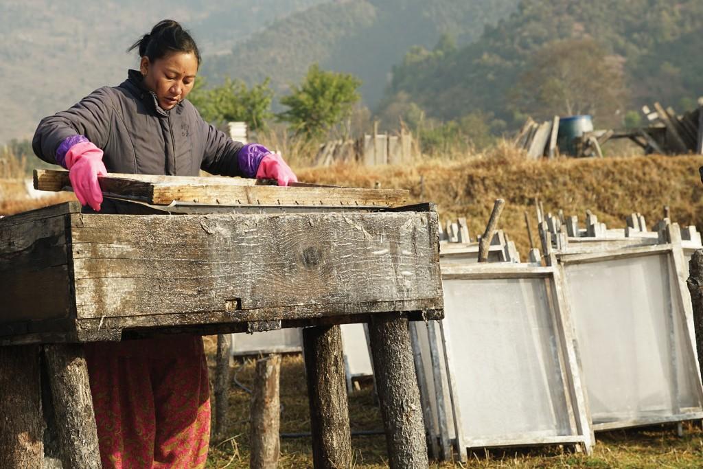 mujeres nepalis proyecto aveda