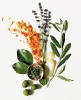 ingredientes aroma rosmery de Aveda