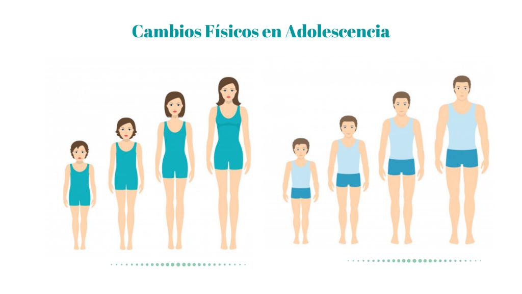Cambios Físicos en Adolescencia